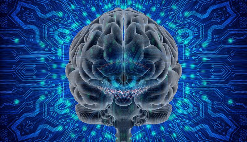 graphic of computerized brain.